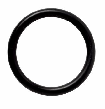primus gasket (pack of 5) for ergopump.